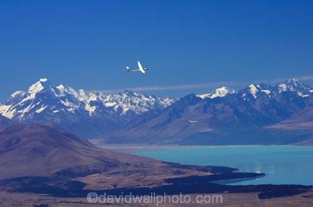 aerial;aerial-photo;aerial-photography;aerial-photos;aerials;air-to-air;alp;alpine;alps;altitude;Aoraki;Aoraki-Mt-Cook;Aoraki-Mount-Cook-National-Park;Aoraki-Mt-Cook-National-Park;aviate;aviation;aviator;aviators;bank;banking;banks;flies;fly;flying;glide;glider;gliders;glides;gliding;high-altitude;ice;lake;Lake-Pukaki;lakes;Mackenzie-Country;main-divide;Mckenzie-Country;mount;Mount-Cook;Mount-Cook-National-Park;mountain;mountain-peak;mountainous;mountains;mountainside;mt;Mt-Cook;Mt-Cook-National-Park;mt.;Mt.-Cook;N.Z.;New-Zealand;New-Zealand-Gliding-Grand-Prix;NZ;NZ-Gliding-Grand-Prix-2006;peak;peaks;race;races;racing;range;ranges;S.I.;sail-plane;sail-planes;sail-planing;sail_plane;sail_planes;sail_planing;sailplane;Sailplane-Grand-Prix;sailplanes;sailplaning;SI;snow;snow-capped;snow_capped;snowcapped;snowy;soar;soaring;South-Canterbury;South-Island;southern-alps;summit;summits;thermal;thermaling;thermalling;thermals;turn;turning;turns;wing;wings
