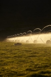 agicultural-machine;agricultural;agriculture;automatic-irrigation;Canterbury;centre-pivot-irrigation;countryside;cultivation;farm;farm-equipment;farm-implements;farm-machinery;farming;farmland;farms;field;fields;grow;growing;irrigate;irrigated-land;irrigation;irrigation-equipment;irrigation-scheme;irrigator;light;machine;machines;Mackenzie-Country;Mackenzie-District;Mackenzie-Region;meadow;meadows;mobile-irrigation;N.Z.;New-Zealand;NZ;paddock;paddocks;pasture;pastures;pivoting-boom-irrigation;resource;rotary-irrigation;rural;S.I.;SI;South-Canterbury;South-Is;South-Island;spray;sprays;sprinkers;sprinkler;Sth-Is;Sth-Is.;Twizel;water