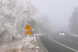 southern-alps;road;roads;transport;transportation;ice;icy;danger;slippery;Chill;Chilled;Chilly;Cold;Dangerous;Daytime;Exterior;Freezing;Frosty;frost;Frozen;Ice_cold;Landscape;Landscapes;New-Zealand;Outdoor;Outdoors;Outside;Scenic;Season;Seasons;Snowy;Transports;Travel;Traveling;Travelling;Travels;Trip;Trips;White;Winter-driving-conditions;Wintertime;Wintry;beautiful;Coldness;Color;Colour;freeze;freezing-fog;Frosted;high-country;hoar-frost;Hoarfrost;idyllic;mackenzie;mackenzie-country;natural;Nature;peaceful;Peacefulness;phenomena;phenomenon;pure;Quiet;Quietness;Scenics;silence;south-island;spectacular;stunning;sunny;tourism;tourist;tourists;tranquil;tranquility;tree;trees;Twizel;view;waitaki;weather;wintery;highway;highways;sign;signs;road-sign;road-signs;roadsign;roadsigns;car;cars;winter-driving;lights;headlights;slippery-road