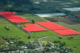 aerial;aerial-photo;aerial-photograph;aerial-photographs;aerial-photography;aerial-photos;aerial-view;aerial-views;aerials;agricultural;agriculture;bird-cloth;bird-cloths;bird-net;bird-nets;bird-netting;country;countryside;crop;crops;farm;farming;farmland;farms;field;fields;fruit;fruit-tree;fruit-trees;horticulture;meadow;meadows;N.Z.;Nelson-Region;New-Zealand;NZ;orchard;orchards;paddock;paddocks;pasture;pastures;red;row;rows;rural;S.I.;season;seasonal;seasons;shade-cloth;shade-net;shade-nets;shade-netting;shhade-cloths;SI;South-Is.;South-Island;spring;springtime;Tasman-Bay;tree;trees