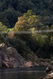 adventure;bridge;bridges;Buller-Gorge;Buller-Gorge-Swing-Bridge;Buller-River;exciting;female;foot-bridge;foot-bridges;footbridge;footbridges;high;N.Z.;Nelson-District;Nelson-Region;New-Zealand;NZ;pedestrian-bridge;pedestrian-bridges;people;person;river;rivers;S.I.;SI;South-Is;South-Island;Sth-Is.;suspension-bridge;suspension-bridges;swing-bridge;swing-bridges;Tasman-District;Tasman-Region;track;tracks;Upper-Buller-Gorge;wire-bridge;wire-bridges;woman