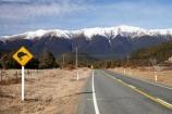 altitude;bird;bush-line;bush-lines;bush_line;bush_lines;bushline;bushlines;centre-line;centre-lines;centre_line;centre_lines;centreline;centrelines;color;colors;colour;colours;driving;emblem;highway;highways;icon;icons;kiwi;kiwi-sign;kiwi-signs;kiwi-warning-sign;kiwi-warning-signs;logo;mount;mountain;mountain-peak;mountainous;mountains;mountainside;mt;mt.;N.Z.;national-park;national-parks;native;nature;Nelson-District;Nelson-Lakes-N.P.;Nelson-Lakes-National-Park;Nelson-Lakes-NP;Nelson-Region;new-zealand;NZ;open-road;open-roads;peak;peaks;range;ranges;road;road-sign;road-signs;road-trip;roads;S.I.;Saint-Arnaud-Range;SI;sign;signs;snow;snow-capped;snow-line;snow-lines;snow_capped;snow_line;snow_lines;snowcapped;snowline;snowlines;snowy;South-Is;South-Island;St-Arnaud-Range;St.-Arnaud-Range;State-Highway-63;summit;summits;symbol;symbols;Tasman-District;Tasman-Region;transport;transportation;travel;traveling;travelling;tree-line;tree-lines;tree_line;tree_lines;treeline;treelines;trip;yellow