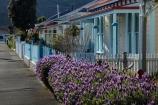 building;buildings;communities;community;cottage;cottages;Elliott-St;Elliott-St-heritage-precinct;Elliott-Street-heritage-precinct;heritage;historic;historic-building;historic-buildings;Historic-Precinct;historical;historical-building;historical-buildings;history;home;homes;house;houses;housing;lavender;lavender-plants;N.Z.;neigborhood;neigbourhood;Nelson;Nelson-City;Nelson-District;Nelson-Region;New-Zealand;NZ;old;picket-fence;picket-fences;residence;residences;residential;residential-housing;S.I.;SI;South-Is;South-Is.;South-Island;Sth-Is;street;streets;suburb;suburban;suburbia;suburbs;tradition;traditional;urban;weatherboard;weatherboards;wooden