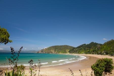 Bay-of-Is;Bay-of-Islands;beach;beaches;coast;coastal;coastline;flax;flax-bush;flax-bushes;flax-flower;flax-flowers;flax-seed-head;flax-seeds;flower;flowers;hot;Kororareka;Long-Beach;N.I.;N.Z.;native;native-plant;New-Zealand;New-Zealand-flax;NI;North-Is;North-Is.;North-Island;Northland;NZ;ocean;Oneroa-Bay;phormium;Phormium-tenax;Russell;sand;sandy;shore;shoreline;summer