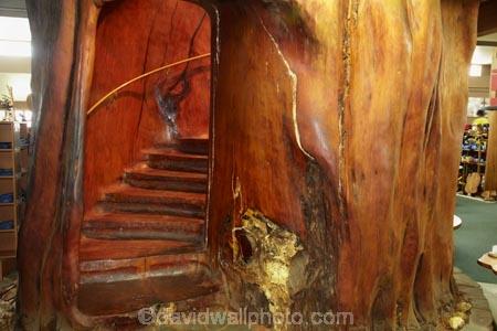 Ancient-Kauri-Kingdom;Awanui;Far-North;giant-kauri-tree;giant-kauri-trees;Kaitaia;Kauri-kingdom;Kauri-shop;kauri-tree;kauri-trees;kauri-trunk;N.I.;N.Z.;New-Zealand;NI;North-Is;North-Is.;North-Island;Northland;NZ;stair;staircase;staircases;stairs;stairway;stairways;tree;tree-trunk;tree-trunks;trees;wood;wooden
