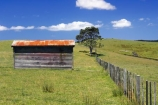 agricultural;agriculture;building;buildings;country;countryside;crop;crops;farm;farming;farmland;farms;fence;fenceline;fencelines;fences;field;fields;horticulture;meadow;meadows;new-zealand;north-is.;north-island;old-farm-shed;paddock;paddocks;pasture;pastures;rural;shed;sheds;tree;trees