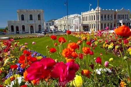 AMP-Building;AMP-Society-Building;Bank-of-New-Zealand-Building;bloom;blooming;blooms;blooning;BNZ-Building;building;buildings;floral;flower;flower-bed;flower-beds;flower-garden;flower-gardens;flowers;Former-AMP-Building;Former-Star-and-Garter-Hotel;garden;gardens;heritage;historic;historic-building;historic-buildings;historical;historical-building;historical-buildings;history;isite;Itchen-St;Itchen-Street;N.Z.;New-Zealand;North-Otago;NZ;Oamaru;Oamaru-Information-Centre;old;Otago;public-flower-garden;public-garden;public-gardens;S.I.;season;seasonal;seasons;SI;South-Is;South-Island;spring;spring-time;spring_time;springtime;Star-amp;-Garter-Building;Star-and-Garter-Building;Star-and-Garter-Hotel;Sth-Is;Thames-St;Thames-Street;Tourism-Information;tradition;traditional;Waitaki;Waitaki-District