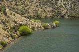Deep-Stream;Lake-Aviemore;N.Z.;New-Zealand;North-Otago;NZ;Otago;SI;South-Island;Waitaki-District;Waitaki-Valley