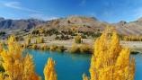aerial;Aerial-drone;Aerial-drones;aerial-image;aerial-images;aerial-photo;aerial-photograph;aerial-photographs;aerial-photography;aerial-photos;aerial-view;aerial-views;aerials;autuminal;autumn;autumn-colour;autumn-colours;autumnal;color;colors;colour;colours;deciduous;Drone;Drones;fall;gold;golden;lake;Lake-Aviemore;lakes;leaf;leaves;N.Z.;New-Zealand;North-Otago;NZ;Otago;poplar;poplar-tree;poplar-trees;poplars;Quadcopter-aerial;Quadcopters-aerials;S.I.;season;seasonal;seasons;serene;SI;South-Is;South-Island;Sth-Is;tree;trees;U.A.V.-aerial;UAV-aerials;Waitaki-District;Waitaki-Region;Waitaki-Valley;water;yellow