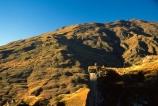 Queenstown;Central-Otago;Skippers-Canyon;canyon;mountain-biker;mountain-bike;mountain;mountains;rocks;rock;rocky;shadow;shadows;shadowy;sky;blue;clear-sky;auburn;brown;grassy;distant;distance