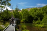 bicycle;bicycles;bike;bike-track;bike-tracks;bike-trail;bike-trails;bikes;biking;boardwalk;boardwalks;bridge;bridges;child;children;cycle;cycle-bridge;cycle-bridges;cycle-track;cycle-tracks;cycle-trail;cycle-trails;cycler;cyclers;cycles;cycling;cyclist;cyclists;families;family;kid;kids;Lake-Hayes-bike-track;Lake-Hayes-Bike-Trail;Lake-Hayes-Circuit;Lake-Hayes-cycle-track;Lake-Hayes-Cycle-Trail;leisure;mountain-bike;mountain-biker;mountain-bikers;mountain-bikes;mtn-bike;mtn-biker;mtn-bikers;mtn-bikes;N.Z.;New-Zealand;NZ;Otago;people;person;push-bike;push-bikes;push_bike;push_bikes;pushbike;pushbikes;Queenstown-Bike-Trail;Queenstown-Cycle-Trail;Queenstown-Trail;Queenstown-Trails;recreation;S.I.;SI;South-Is;South-Island;Southern-Lakes;Southern-Lakes-District;Southern-Lakes-Region;Sth-Is;tourism;tourist;tourists;wetland;wetlands