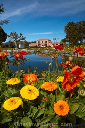 architecture;bath-house;Bay-of-Plenty-Region;bloom;blooming;blooms;Blue-Bath;Blue-Baths;building;buildings;floral;flower;flower-bed;flower-beds;flower-garden;flower-gardens;flowers;garden;gardens;Government-Gardens;heritage;historic;historic-building;historic-buildings;historical;historical-building;historical-buildings;history;N.I.;N.Z.;New-Zealand;NI;North-Is;North-Island;Nth-Is;NZ;old;orange;orange-flowers;park;parks;pond;ponds;public-flower-garden;public-garden;public-gardens;reflection;reflections;Rotorua;Spanish-mission-style;Spanish-mission_style-bath-house;tradition;traditional;yellow;yellow-flowers