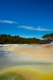 Artists-Palette;Artists-Palette;Bay-of-Plenty-Region;boiling-pool;boiling-pools;geothermal;geothermal-activity;green;hot;hot-pool;hot-pools;hot-water;N.I.;N.Z.;New-Zealand;NI;North-Is;North-Island;Nth-Is;NZ;pool;Rotorua;steam;thermal;thermal-activity;thermal-area;tourism;tourist;tourists;travel;volcanic;volcanic-activity;Wai_o_tapu;Wai_o_tapu-Reserve;Wai_o_tapu-Thermal-Reserve;Wai_o_tapu-Thermal-Wonderland;Waiotapu;Waiotapu-Reserve;Waiotapu-Thermal-Reserve;Waiotapu-Thermal-Wonderland;yellow