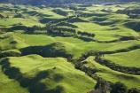 aerial;aerial-photo;aerial-photograph;aerial-photographs;aerial-photography;aerial-photos;aerial-view;aerial-views;aerials;agricultural;agriculture;country;countryside;Dairy-Farm;Dairy-Farming;Dairy-Farms;farm;farming;farmland;farms;field;fields;meadow;meadows;N.I.;N.Z.;New-Zealand;NI;North-Is;North-Is.;North-Island;NZ;Okato;paddock;paddocks;pasture;pastures;rural;Taranaki;windbreak;windbreaks