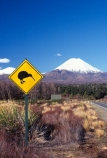cone;kiwis;mountain;peak;road-sign;sign;snow;snow-cap;snow-capped;snow-caps;snow_cap;snow_capped;snow_caps;volcanic;volcano