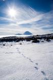 alpine;central-plateau;cold;foot-print;foot-prints;foot-step;foot-steps;foot-trail;foot-trails;footprint;footprints;footstep;footsteps;freeze;freezing;Mount-Ngauruhoe;Mountain;mountainous;mountains;mt;Mt-Ngauruhoe;Mt-Ruapehu;mt.;Mt.-Ngauruhoe;N.I.;N.Z.;New-Zealand;NI;North-Island;NZ;ruapehu-district;Scoria-Flat;Scoria-Flats;season;seasonal;seasons;snow;snowing;snowy;Tongariro-N.P.;Tongariro-National-Park;Tongariro-NP;track;tracks;trail;trails;volcanic;volcanic-plateau;volcano;volcanoes;white;winter;wintery;World-Heritage-Area;World-Heritage-Areas;World-Heritage-Site;World-Heritage-Sites