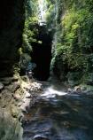 bush;cavern;caverns;caves;creek;creeks;flora;native;natural;person;rocks;rocky;streams;tourist;tunnel;undergrowth;water
