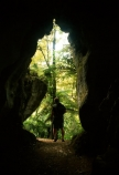 bush;cave;cavern;caves;crack;entrance;flora;hiking;opening;outline;silhouette;tourism;tourist;tourists;track;walking