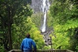 beautiful;beauty;blow;blowing;brook;brooks;bush;cascade;cascades;creek;creeks;doc;endemic;falls;fern;ferns;forest;forests;green;gust;gusty;hike;hiker;hikers;hiking;hiking-track;hiking-tracks;Kaimai-Ranges;lush;Matamata;moss;native;native-bush;native-forest;natives;natural;nature;New-Zealand;north-is.;north-island;northland;rain-forest;rain-forests;rain_forest;rain_forests;rainforest;rainforests;rapid;rapids;river;rivers;scene;scenic;stream;streams;strong-wind;timber;tourism;tourist;tourists;tracks;tramp;tramper;trampers;tramping;tree;trees;trek;treker;trekers;treking;trekker;trekkers;trekking;verdant;Waikato;Wairere-Falls;Wairere-Falls-Scenic-Reserve;wairere-stream;walk;walker;walkers;walking;walking-track;walking-tracks;water;water-fall;water-falls;waterfall;waterfalls;wet;wind;windy;wood;woods