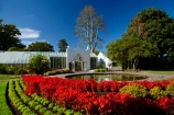 botanic-garden;botanic-gardens;botanical-garden;botanical-gardens;flower;flower-bed;flower-beds;flower-garden;flower-gardens;flowers;fountain;fountains;garden;gardens;Hamilton-Garden;Hamilton-Gardens;N.Z.;New-Zealand;North-Is;North-Island;Nth-Is;NZ;pond;ponds;public-garden;public-gardens;red;red-flower;red-flowers;Victorian-Flower-Garden;Victorian-Flower-Gardens;Victorian-Garden-Conservatory;Waikato;water-feature;water-features