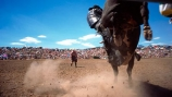 rodeo;bull;kick;kicking;hoof;hooves;dirt;crowd;audience;gathering;daring;dare-devil;daredevil;stunt;stunt-man;stuntman;stunt-men;stuntmen;challenge;dust