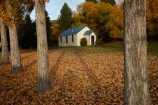 autuminal;autumn;autumn-colour;autumn-colours;autumnal;building;buildings;Cadrona;Cardrona;Cardrona-Church;Cardrona-Hall;Cardrona-Valley;Central-Otago;color;colors;colour;colours;deciduous;fall;gold;golden;heritage;historic;historic-building;historic-buildings;historical;historical-building;historical-buildings;history;leaf;leaves;N.Z.;New-Zealand;NZ;old;Otago;season;seasonal;seasons;SI;South-Island;Sth-Is;tradition;traditional;tree;trees;Wanaka;weatherboard;weatherboards;wood;wooden;wooden-building;wooden-buildings;yellow
