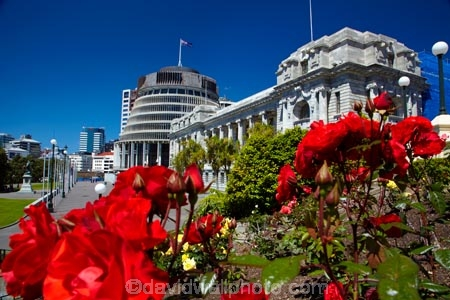 architectural;architecture;Beehive;building;buildings;capital;capitals;government;governments;Grounds-of-Parliament;heritage;historic;historic-building;historic-buildings;historical;historical-building;historical-buildings;history;N.I.;N.Z.;New-Zealand;New-Zealand-Goverment;New-Zealand-Parliament;New-Zealand-Parliament-Buildings;NI;North-Is;North-Is.;North-Island;Nth-Is;NZ;NZ-Government;NZ-Parliament;old;Parliament;Parliament-Buildings;Parliament-Grounds;Parliament-House;pathway;pathways;rose;rose-garden;rose-gardens;roses;The-Beehive;tradition;traditional;Wellington