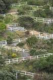 capital;capitals;footpath;N.I.;N.Z.;New-Zealand;NI;North-Is;North-Island;NZ;path;paths;railing;steep;Wellington;Zigzag-Footpath;zigzags