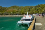 boat;boats;Days-Bay;Days-Bay-Beach;Days-Bay-Jetty;Days-Bay-Pier;Days-Bay-Wharf;dock;docks;Eastbourne;ferries;ferry;hot;jetties;jetty;N.I.;N.Z.;New-Zealand;NI;North-Is;North-Island;NZ;passenger-boat;passenger-boats;passenger-ferries;passenger-ferry;pier;piers;public-transport;quay;quays;ship;shipping;ships;summer;summer_time;summertime;transport;transportation;travel;vessel;vessels;waterside;Wellington;Wellington-Harbor;Wellington-Harbour;wharf;wharfes;wharves