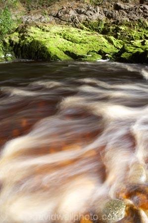 Kahurangi-National-Park;Karamea;national-park;national-parks;New-Zealand;Oparara-Basin;Oparara-River;rapid;rapids;river;rivers;South-Island;tannin;tannin-stained;tannin-stained-river;tannin-stained-water;tannin_stained;tannin_stained-river;tannin_stained-water;West-Coast;Westland;white-water