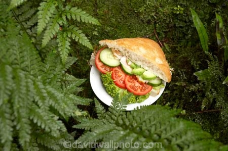 alfresco;avocado;bread;bread-roll;bun;chicken;cucumber;cucumbers;eco-tourism;eco-tourist;eco-tourists;eco_tourism;eco_tourist;eco_tourists;ecotourism;ecotourist;ecotourists;fern;ferns;Lake-Moeraki-Wilderness-Lodge;lettuce;lettuces;lunch;lunches;N.Z.;New-Zealand;NZ;ouitdoors;S.I.;sandwich;sandwiches;SI;smoked-chicken-sandwich;smoked-chicken-sandwiches;smoked_chicken-sandwich;smoked_chicken-sandwiches;snack;South-Island;tomato;tomatoes;West-Coast;Westland;Wilderness-Lodge-Lake-Moeraki