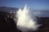 blow-hole;coast;coastal;coastline;formation;geology;ocean;rock-formations;sea;sedementary;shore;shoreline;splash;spray;tasman;tidal;tide;wave;waves