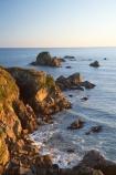 Buller-District;Buller-Region;Cape-Foulwind;Cape-Foulwind-Walkway;coast;coastal;coastline;coastlines;coasts;foreshore;late-light;N.Z.;New-Zealand;NZ;ocean;rocks;rocky;rocky-coastline;S.I.;sea;shore;shoreline;shorelines;shores;SI;South-Is;South-Island;sunlight;Tasman-Sea;water;West-Coast;Westland