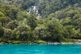 beautiful;beauty;Beech-Forest;bush;cascade;cascades;creek;creeks;endemic;falls;forest;forests;green;haast-river;native;native-bush;natives;natural;nature;New-Zealand;Nothofagus;rain-forest;rain-forests;rain_forest;rain_forests;rainforest;rainforests;river;rivers;scene;scenic;South-Island;southern-beeches;stream;streams;timber;tree;tree-trunk;tree-trunks;trees;trunk;trunks;water;water-fall;water-falls;waterfall;waterfalls;West-Coast;westland;wet;wood;woods