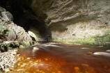 cave;cavern;caverns;caves;grotto;grottos;Kahurangi-National-Park;Karamea;limestone;limestone-formation;limestone-formations;national-park;national-parks;New-Zealand;Oparara-Arch;Oparara-Basin;Oparara-River;river;rivers;South-Island;speleology;spelunk;spelunking;tannin;tannin-stained;tannin-stained-river;tannin-stained-water;tannin_stained;tannin_stained-river;tannin_stained-water;underground;underground-cavern;underground-caverns;West-Coast;Westland