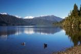 alp;alpine;alps;calm;duck;ducks;lake;Lake-Kaniere;lakes;main-divide;mount;Mount-Reeves;mountain;mountain-peak;mountainous;mountains;mountainside;mt;Mt-Reeves;mt.;Mt.-Reeves;N.Z.;New-Zealand;NZ;placid;quiet;range;ranges;reflection;reflections;S.I.;serene;SI;smooth;snow;snow-capped;snow_capped;snowcapped;snowy;South-Is.;South-Island;southern-alps;still;Sunny-Bight;Toaroha-Range;tranquil;water;Wesl-Coast;Westland