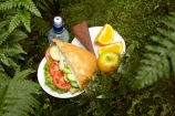 alfresco;apple;apples;avocado;bottle-of-water;bread;bread-roll;bun;chicken;chocolate-cake;chocolate-cakes;cucumber;cucumbers;eco-tourism;eco-tourist;eco-tourists;eco_tourism;eco_tourist;eco_tourists;ecotourism;ecotourist;ecotourists;fern;ferns;Lake-Moeraki-Wilderness-Lodge;lettuce;lettuces;lunch;lunches;mineral-water;N.Z.;New-Zealand;NZ;orange;oranges;ouitdoors;S.I.;sandwich;sandwiches;SI;smoked-chicken-sandwich;smoked-chicken-sandwiches;smoked_chicken-sandwich;smoked_chicken-sandwiches;snack;South-Island;tomato;tomatoes;water;water-bottle;water-bottles;West-Coast;Westland;Wilderness-Lodge-Lake-Moeraki