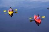 adventure;adventure-tourism;Blue-River;boat;boats;calm;canoe;canoeing;canoes;kayak;kayaker;kayakers;kayaking;kayaks;lake;Lake-Moeraki;lakes;Moeraki-River;N.Z.;New-Zealand;NZ;paddle;paddler;paddlers;paddling;placid;quitet;red;reflction;reflections;river;rivers;S.I.;sea-kayak;sea-kayaker;sea-kayakers;sea-kayaking;sea-kayaks;serene;SI;smoot;South-Island;still;tranquil;water;West-Coast;Westland;yellow