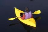 adventure;adventure-tourism;Blue-River;boat;boats;calm;canoe;canoeing;canoes;kayak;kayaker;kayakers;kayaking;kayaks;lake;Lake-Moeraki;lakes;Moeraki-River;N.Z.;New-Zealand;NZ;paddle;paddler;paddlers;paddling;placid;quitet;reflction;reflections;river;rivers;S.I.;sea-kayak;sea-kayaker;sea-kayakers;sea-kayaking;sea-kayaks;serene;SI;smoot;South-Island;still;tranquil;water;West-Coast;Westland;yellow