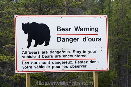 AB;Alberta;Albertas-Rockies;bear;bear-sign;bear-signs;bear-warning-sign;bear-warning-signs;bears;Canada;Canadian;Canadian-Cordillera;Canadian-Rockies;Canadian-Rocky-Mountain-Parks;Canadian-Rocky-Mountain-Parks-World-Heritage-Site;Jasper-N.P.;Jasper-National-Park;Jasper-NP;North-America;North-American-Cordillera;North-American-Rocky-Mountains-Range;road-sign;road-signs;road_sign;road_signs;roads;roadsign;roadsigns;Rocky-Mountains;Rocky-Mountains-Range;sign;signs;symbol;symbols;warn;warning;warning-sign;warning-signs;Western-Canada;Western-Cordillera;wildlife;wildlife-sign;wildlife-signs;wildlife-warning-sign;wildlife-warning-signs