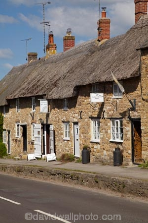 8038;Abbotsbury;britain;building;buildings;cottages;dorset;england;G.B.;GB;grass-roof;great-britain;heritage;historic;historic-building;historic-buildings;historical;historical-building;historical-buildings;history;kingdom;narrow-street;narrow-streets;old;road;roads;Rodden-Row;roof;roofing-material;roofs;rooves;row-of-cottages;row-of-houses;stone-buidling;stone-buildings;straw-roof;straw-rooves;street;streets;thatch;thatched;thatched-cottage;thatched-cottages;thatched-house;thatched-houses;thatched-roof;thatched-roofs;thatched-rooves;thatching;tradition;traditional;traditional-thatched-cottage;traditional-thatched-cottages;U.K.;uk;united;united-kingdom;village;West-Dorset