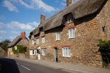 8044;Abbotsbury;britain;building;buildings;cottages;dorset;england;G.B.;GB;grass-roof;great-britain;heritage;historic;historic-building;historic-buildings;historical;historical-building;historical-buildings;history;kingdom;narrow-street;narrow-streets;old;road;roads;Rodden-Row;roof;roofing-material;roofs;rooves;row-of-cottages;row-of-houses;stone-buidling;stone-buildings;straw-roof;straw-rooves;street;streets;thatch;thatched;thatched-cottage;thatched-cottages;thatched-house;thatched-houses;thatched-roof;thatched-roofs;thatched-rooves;thatching;tradition;traditional;traditional-thatched-cottage;traditional-thatched-cottages;U.K.;uk;united;united-kingdom;village;West-Dorset