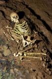 bone;bones;Britain;cave;cavern;caverns;cavers;caves;caving;Cheddar;Cheddar-Cave;Cheddar-Caves;Cheddar-Man;Cheddar-show-cave;Cheddar-show-caves;England;explore;explorers;exploring;G.B.;GB;Goughs-Cave;Goughs-Cave;Great-Britain;grotto;grottos;human-skeleton;human-skeletons;remains;Sedgemoor;show-cave;show-caves;skeleton;skeletons;Somerset;U.K.;UK;United-Kingdom