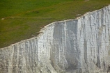 bluff;bluffs;Britain;British-Isles;chalk-cliff;chalk-cliffs;chalk-downland;chalk-downlands;chalk-downs;chalk-formation;chalk-formations;chalk-headland;chalk-headlands;chalk-layer;chalk-layers;cliff;cliffs;Cretaceous-chalk-layer;Cuckmere-Haven;down;downland;downlands;downs;East-Sussex;England;English;eroded;erosion;Europe;formation;formations;G.B.;GB;geological;geological-formation;geological-formations;geology;Great-Britain;image;images;layer;layering;layers;limestone;natural;natural-landscape;natural-landscapes;photo;photos;rock-formation;rock-formations;S.E.-England;SE-England;Seaford;sedimentary-layer;sedimentary-layers;Seven-Sisters;Seven-Sisters-Chalk-Cliffs;Seven-Sisters-Cliffs;Seven-Sisters-Country-Park;South-Downs;South-Downs-N.P.;South-Downs-National-Park;South-Downs-NP;South-East-England;Southern-England;steep;stone;strata;stratum;Sussex;The-Seven-Sisters;U.K.;UK;United-Kingdom;unusual-natural-feature;unusual-natural-features;unusual-natural-formation;unusual-natural-formations;water;white-chalk-cliff;white-chalk-cliffs;White-Cliff;white-cliffs