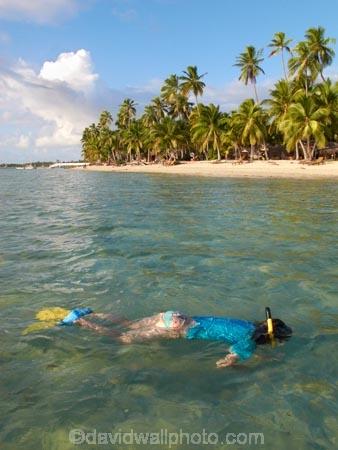 beach;beaches;child;children;coast;coastal;coastline;coastlines;coasts;coral-reef;coral-reefs;Fij;Fiji;Fiji-Islands;fins;flippers;foreshore;girl;girls;holiday;holiday-resort;holiday-resorts;holidays;kid;kids;Malolo-Lailai-Is;Malolo-Lailai-Island;Malololailai-Is;Malololailai-Island;Mamanuca-Group;Mamanuca-Is;Mamanuca-Island-Group;Mamanuca-Islands;Mamanucas;ocean;Pacific;Pacific-Island;Pacific-Islands;palm;palm-tree;palm-trees;palms;people;person;Plantation-Is;Plantation-Is-Resort;Plantation-Island;Plantation-Island-Resort;reef;reefs;resort;resort-hotel;resort-hotels;resorts;sand;sandy;sea;shore;shoreline;shorelines;shores;snorkeller;snorkellers;snorkelling;South-Pacific;swim;swimmer;swimmers;swimming;tourism;tourist;tourists;tropical-island;tropical-islands;tropical-reef;tropical-reefs;vacation;vacations;water