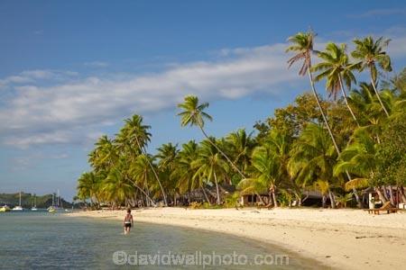 beach;beaches;beachfront-bure;beachfront-bures;bure;bures;coast;coastal;coastline;coastlines;coasts;female;Fij;Fiji;Fiji-Islands;foreshore;girl;girls;holiday;holiday-resort;holiday-resorts;holidays;Malolo-Lailai-Is;Malolo-Lailai-Island;Malololailai-Is;Malololailai-Island;Mamanuca-Group;Mamanuca-Is;Mamanuca-Island-Group;Mamanuca-Islands;Mamanucas;ocean;Pacific;Pacific-Island;Pacific-Islands;palm;palm-tree;palm-trees;palms;paradise;Plantation-Is;Plantation-Is-Resort;Plantation-Island;Plantation-Island-Resort;resort;resort-hotel;resort-hotels;resorts;sand;sandy;sea;shore;shoreline;shorelines;shores;South-Pacific;tropical-island;tropical-islands;vacation;vacations;water;waterfront-bure;waterfront-bures;woman;women