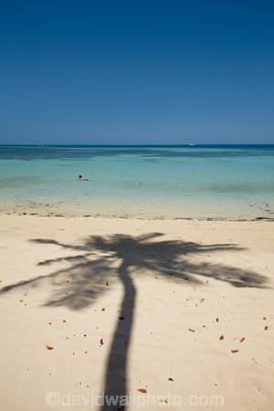 aqua;aquamarine;beach;beaches;blue;clean-water;clear-water;coast;coastal;coastline;coastlines;coasts;cobalt-blue;cobalt-ultramarine;cobaltultramarine;Fij;Fiji;Fiji-Islands;foreshore;holiday;holiday-resort;holiday-resorts;holidays;Malolo-Lailai-Is;Malolo-Lailai-Island;Malololailai-Is;Malololailai-Island;Mamanuca-Group;Mamanuca-Is;Mamanuca-Island-Group;Mamanuca-Islands;Mamanucas;ocean;Pacific;Pacific-Island;Pacific-Islands;palm;palm-frond;palm-fronds;palm-shadow;palm-tree;palm-tree-shadow;palm-trees;palms;paradise;Plantation-Is;Plantation-Is-Resort;Plantation-Island;Plantation-Island-Resort;resort;resort-hotel;resort-hotels;resorts;sand;sandy;sea;shadow;shadows;shore;shoreline;shorelines;shores;South-Pacific;teal-blue;tropical-island;tropical-islands;turquoise;vacation;vacations;water