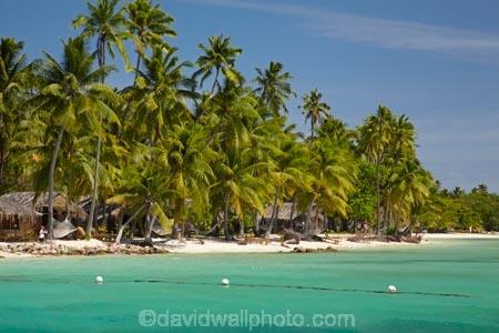 aqua;aquamarine;beach;beaches;beachfront-bure;beachfront-bures;blue;bure;bures;clean-water;clear-water;coast;coastal;coastline;coastlines;coasts;cobalt-blue;cobalt-ultramarine;cobaltultramarine;Fij;Fiji;Fiji-Islands;foreshore;holiday;holiday-resort;holiday-resorts;holidays;Malolo-Lailai-Is;Malolo-Lailai-Island;Malololailai-Is;Malololailai-Island;Mamanuca-Group;Mamanuca-Is;Mamanuca-Island-Group;Mamanuca-Islands;Mamanucas;ocean;Pacific;Pacific-Island;Pacific-Islands;palm;palm-tree;palm-trees;palms;Plantation-Is;Plantation-Is-Resort;Plantation-Island;Plantation-Island-Resort;resort;resort-hotel;resort-hotels;resorts;sand;sandy;sea;shore;shoreline;shorelines;shores;South-Pacific;teal-blue;tropical-island;tropical-islands;turquoise;vacation;vacations;water;waterfront-bure;waterfront-bures