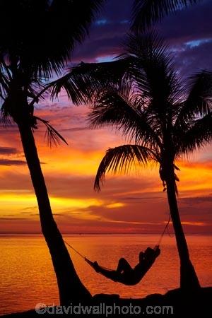coconut-palm;coconut-palm-tree;coconut-palm-trees;coconut-palms;Coral-Coast;dusk;evening;female;Fij;Fiji-Islands;hammock;hammocks;Korotogo;nightfall;orange;Pacific;Pacific-Ocean;palm;palm-tree;palm-trees;palms;people;person;Sigatoka;silhouette;silhouettes;sky;South-Pacific;sunset;sunsets;tourism;tourist;tourists;tropical-island;tropical-islands;twilight;Viti-Levu;Viti-Levu-Island;woman;women