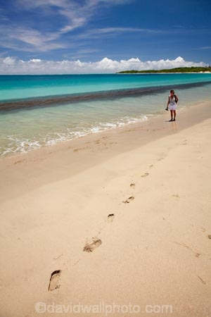 aqua;aquamarine;beach;beaches;blue;clean-water;clear-water;coast;coastal;coastline;coastlines;coasts;cobalt-blue;cobalt-ultramarine;cobaltultramarine;Coral-Coast;female;Fij;Fiji;Fiji-Islands;foot-print;foot-prints;footprint;footprints;footstep;footsteps;foreshore;holiday;holidays;lady;Natadola;Natadola-Beach;Natadola-Harbor;Natadola-Harbour;ocean;oceans;Pacific;Pacific-Ocean;paradise;people;person;sand;sandy;sea;seas;shore;shoreline;South-Pacific;surf;teal-blue;tourism;tourist;tourists;tropical-island;tropical-islands;turquoise;vacation;vacations;Viti-Levu;wave;waves;woman;women